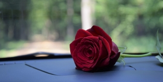Five ways to show your car some love this Valentine's season